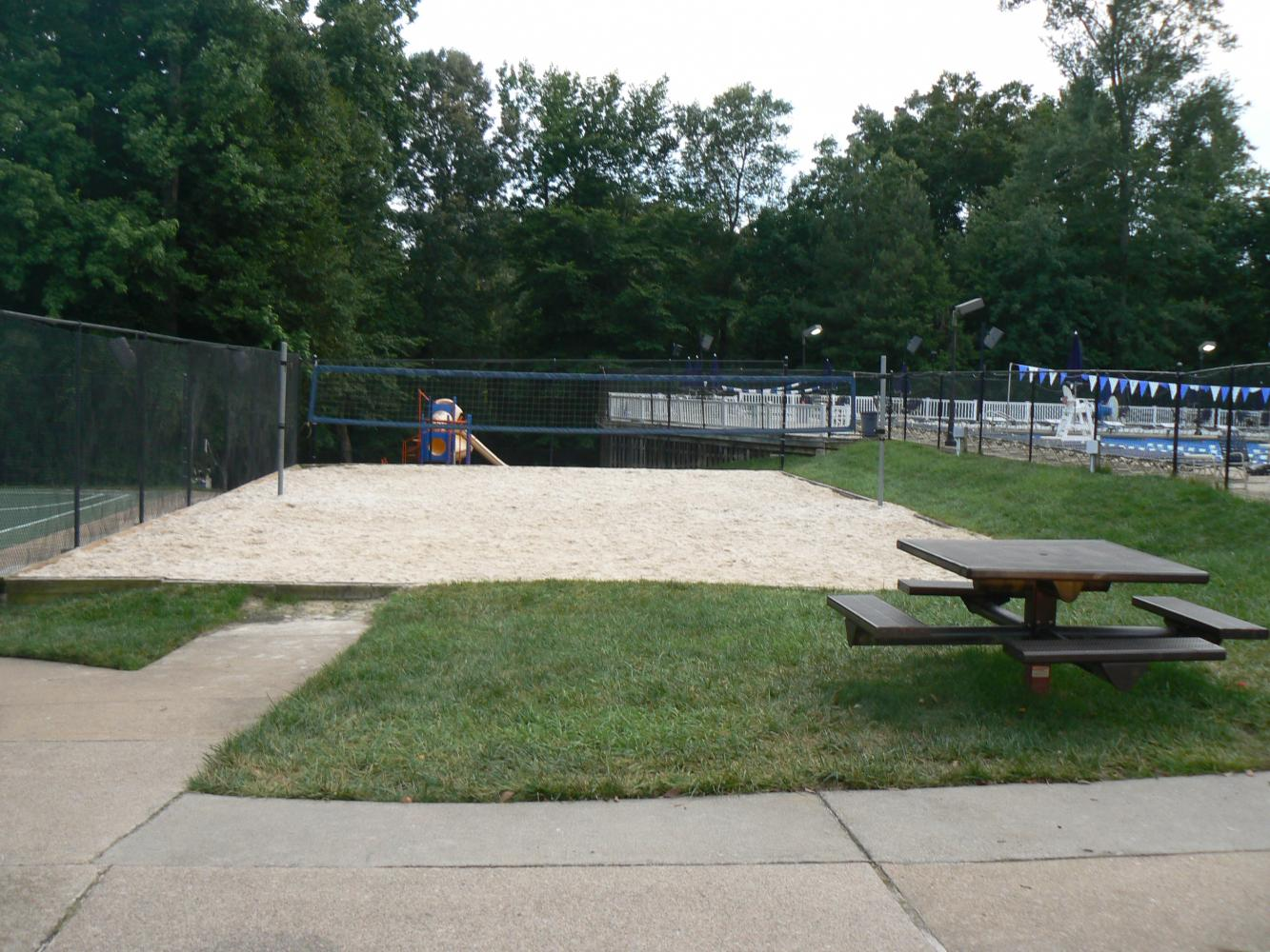 Volleyball Court Kings Charter